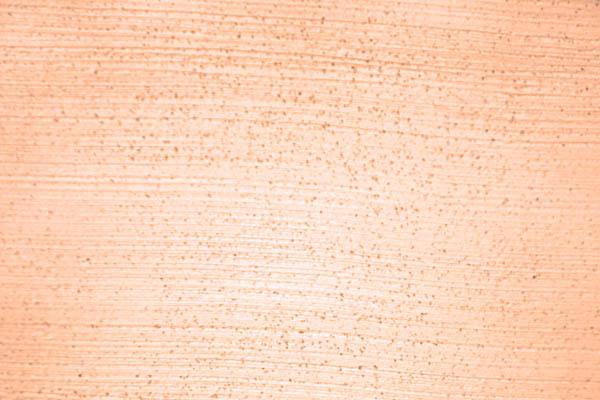 Haga Sumpfkalkputz Strukturbesen